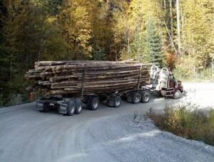 loggingtruck-300x228